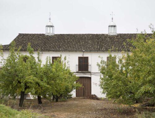 El oleoturismo en Jaén